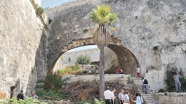 Micas will be built at the currently inaccessible San Salvatore rampart close to the Garden of Rest in Floriana. Photo: Chris Sant Fournier