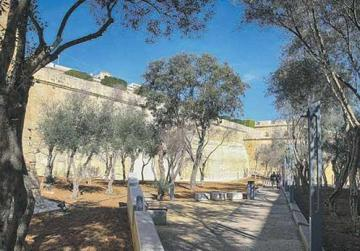The fortifications have been given more prominence through the transplanting in the same site of a number of trees originally located in close proximity to the walls.