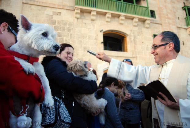 Father Alfred Vella blesses animals and their owners at the Valletta Waterfront on January 18. The occasion marks the feast of St Anthony the Abbot protector of livestock. Photo: Mark Zammit Cordina
