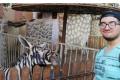 Black and white case? Zoo painted donkey to look like zebra