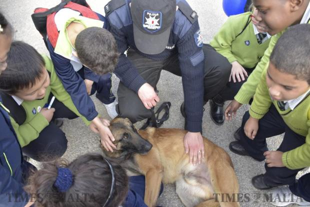 School children pet a police dog during an open day held at the Civil Protection headquarters in Xemxija on February 13. Photo: Mark Zammit Cordina