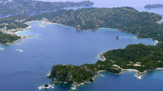 Ogasawara, where the turtles originate from.