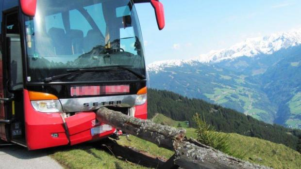 Hero holidaymaker, 65, stops tour bus plunging over a 300ft precipice