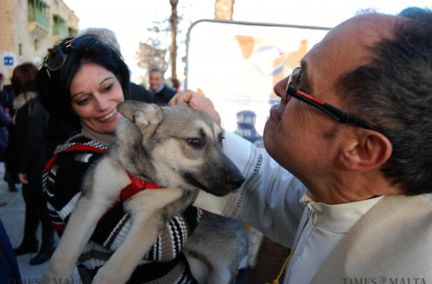 Father Alfred Vella pets a Husky at the blessing of animals held at the Valletta Waterfront on January 18. The occasion marks the feast of St Anthony the Abbot protector of livestock. Photo: Mark Zammit Cordina