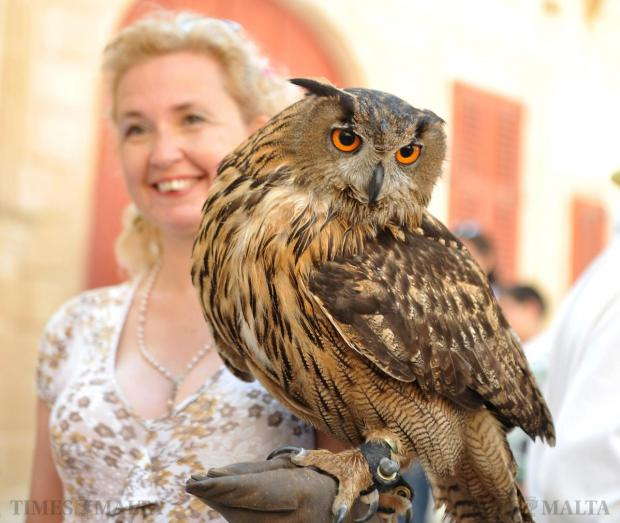 A woman carries an owl at the Medieval Fest in Mdina on April 18. Photo: Chris Sant Fournier