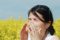 How to survive high pollen counts