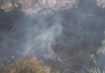 Giant reeds main victim of Il-Maqluba fire