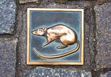 The metal rat, symbol of Hamelin as per the legend of the Pied Piper of Hamelin.