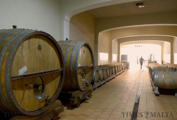 Barrels line the cellars of the Maria Rosa Wine Estate in Attard on August 8, in preparation for this years grape harvest due to happen in a few weeks. Photo: Matthew Mirabelli