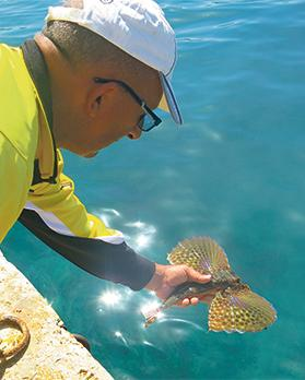 All local fishing clubs implement the catch and release practice whenever possible.