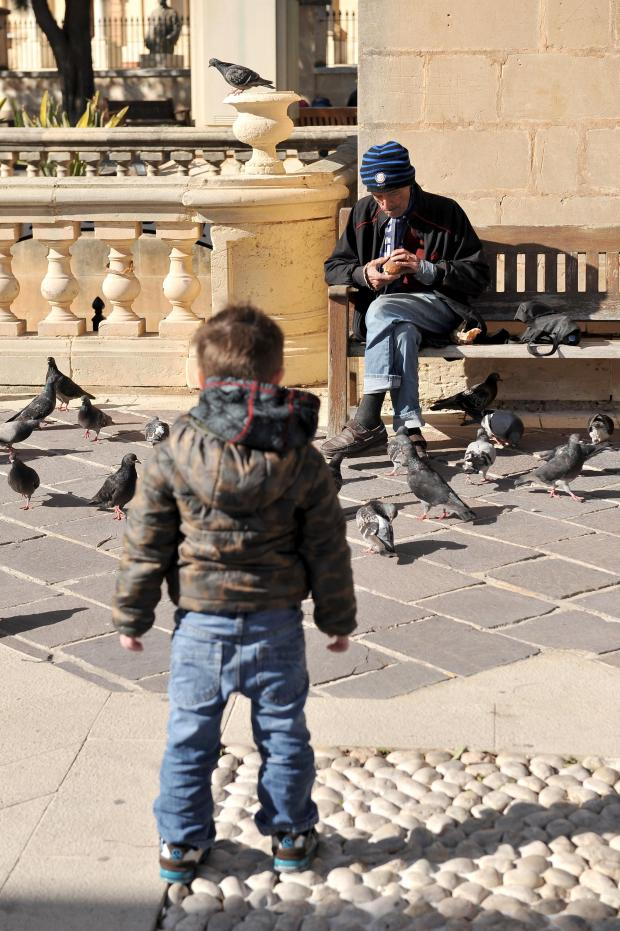 A boy watches a man feed pigeons at the Upper Barrakka Garden on January 3. Photo: Chris Sant Fournier