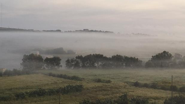 Misty morning. Photo: Natalie Kenely