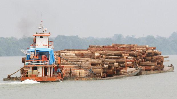 Logs cut from the Amazon rainforest are transported by barge to a shipping port, just off Marajo Island near the mouth of the Amazon River. Photo: Reuters