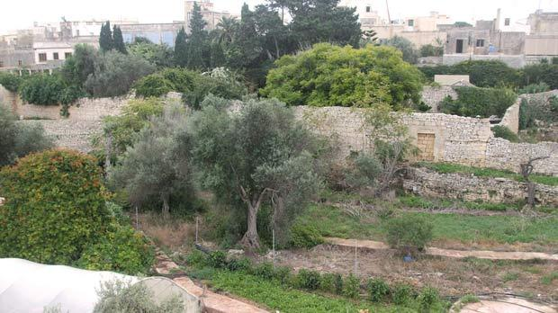 Time will tell if the precedent set by Mepa at Villa Mekrech in Għaxaq will result in the piecemeal development of its entire gardens.