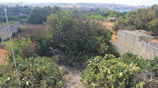 Planning application PA 04437/16 to develop this ODZ plot in the hamlet of Santu Rokku in Kalkara is set to be decided by the Planning Commission.