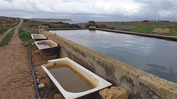 Water demand is high for tourism and agriculture in areas where the water table has been overexploited, as at Wied il-Musa.