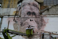 Street artists join the fight to save the environment