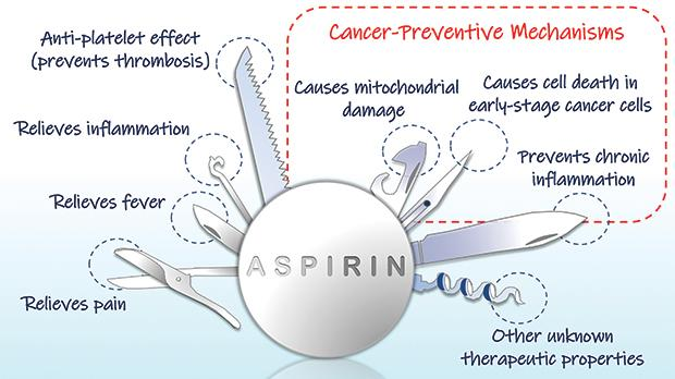 The multi-faceted importance of aspirin in medicine. Photo: Gianluca Farrugia