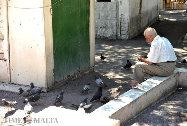 A man feeds pigeons at the Valletta bus terminus on August 29. Photo: Chris Sant Fournier