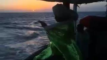 Watch: NGO rescue boat arrives in Spanish port with 87 migrants aboard