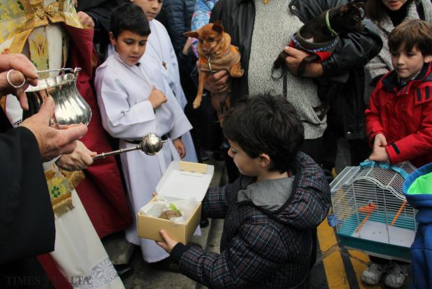 A child presents his tortoise for blessing at the traditional animal blessings in Rabat on January 10. Photo: Paul Spiteri Lucas
