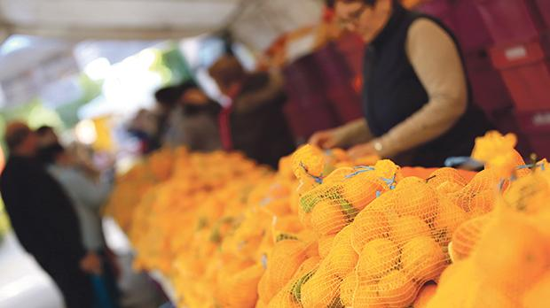 Citrus fruits as well as cakes, muffins and jams were on sale at San Anton Gardens, yesterday, in aide of animal welfare NGOs.