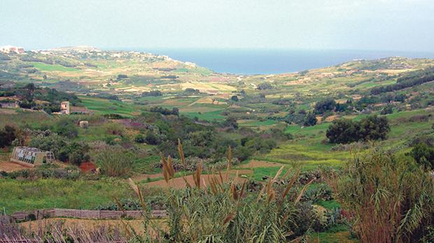 One of the breathtaking array of Gozo sights.