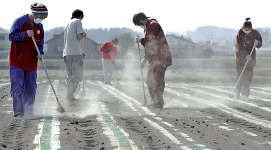 Workers removing volcanic ash covering a vegetable field in Miyakonojo, Miyazaki prefecture following the eruption of nearby Mount Shinmoedake volcano in the Kirishima range.
