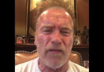 Watch: Trump was like a 'little wet noodle' during Putin press conference - Schwarzenegger