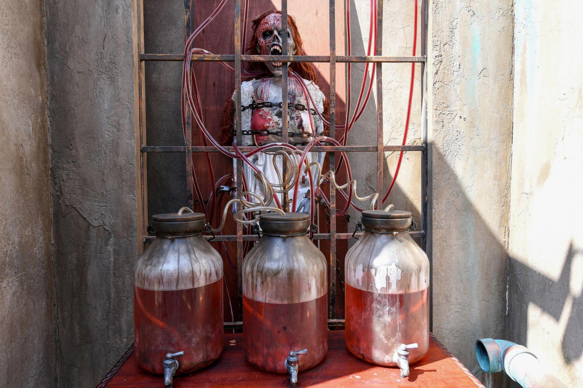 Jars of blood are seen part of 'The Bride of Frankenstein' maze.