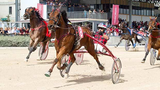 Overtaker By Sib winning the Premier Class race. Photo: Inigo Taylor