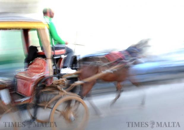 A traditional Maltese 'karozzin' rushes past in Valletta on December 5. Photo: Chris Sant Fournier