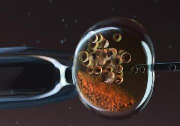 More embryos could remain frozen through 'compromised' by IVF Bill