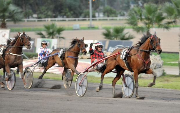 Overtaker By Sib on his way to victory in the class Premier race. Photo: Chris Sant Fournier