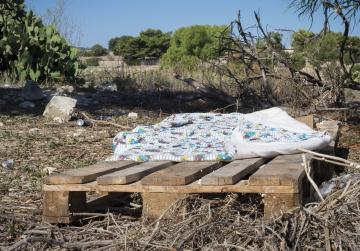 Homeless migrants sleep on pallets and mattresses in nearby farm
