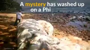 Watch: Mystery perplexes locals in Philippine beach
