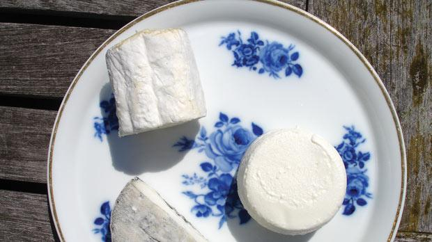 Goat's cheese – the perfect accompaniment to white Loire wines.