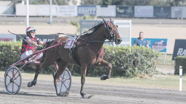 Overtaker By Sib on its way to victory at the Marsa racetrack, yesterday. Photo:Stefan Abela