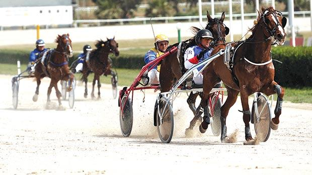Noel Baldacchino leads Soprano Du Lys to victory in the GoldClass race. Photo:Chris SantFournier