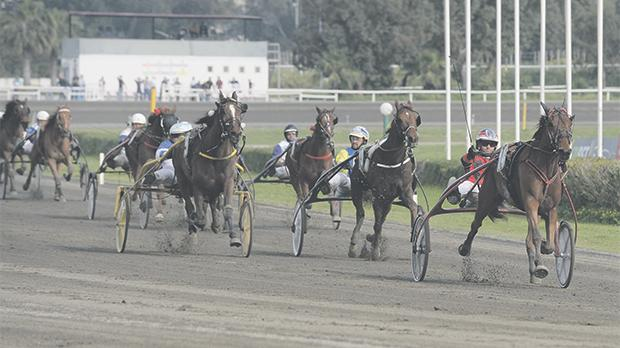 Marco Refalo guides Overtaker bySib to victory in yesterday's Premier Class race. Photo: Matthew Mirabelli