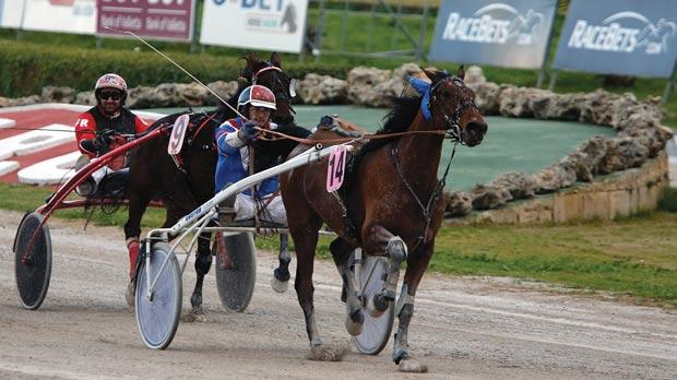 Pronostic De Neige crossing the finish line first at the racetrack. Photo:Darrin Zammit Lupi