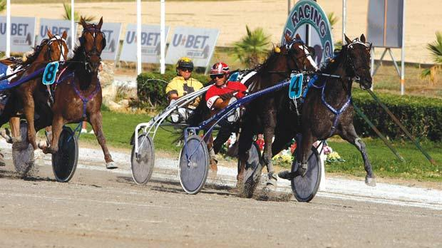 Lady de Vindecy (no.4) winning the Premier Class final, yesterday. Photo: Darrin Zammit Lupi