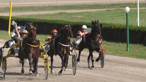 Josef Cassar (left) shows his delight as he steers newcomer Mars to victory, yesterday. Photo: Jason Borg