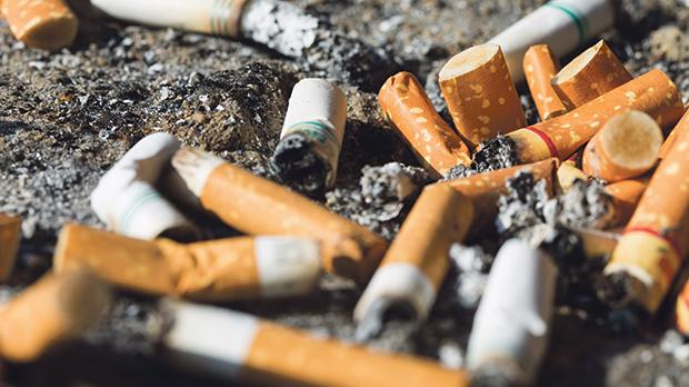 Cigarette butts contaminate ecosystems and poison marine life as they are mistaken for food.
