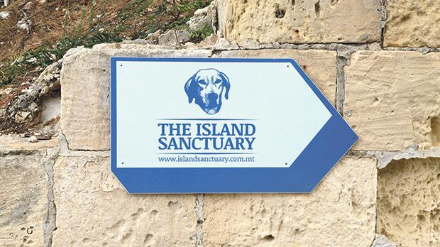 The Marsaxlokk animal shelter is appealing to the public for help in raising funds for a new incinerator. Photo: Wikimedia