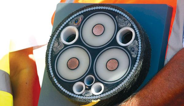 A cross-section of the proposed interconnector cable. Photo: Darrin Zammit Lupi