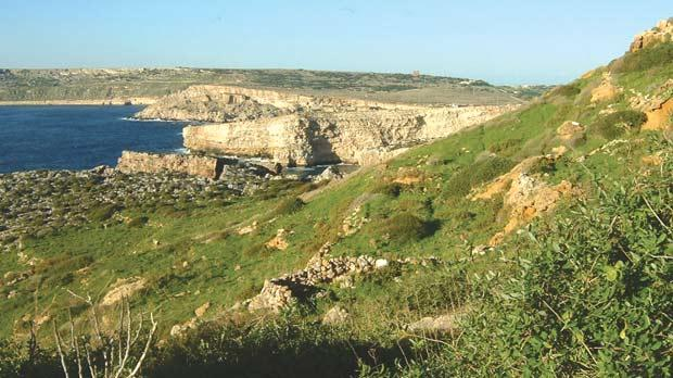 The Gaia Foundation is at odds with the Government over funding payments for Majjistral Park.
