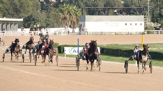 The track, which is 2.8km long, hosts regular weekend championship races in trot. Photo: Chris Sant Fournier