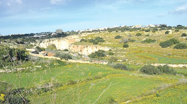 Wied Għomor is a scheduled area of ecological and scientific importance.