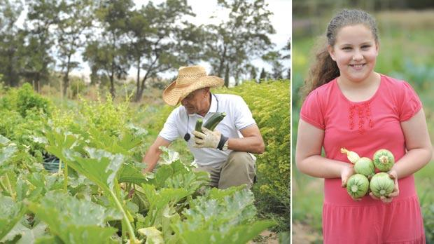 These allotments form part of a pilot project kicked off last year by the Rural Affairs Ministry. Photos: Matthew Mirabelli. Right: People of all ages can benefit from learning how to grow their own food.
